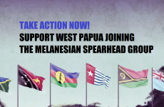Take Action Now – Support West Papua joining the Melanesian Spearhead Group
